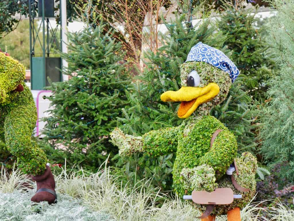 Donald Duck made from a bush with a hat on at Christmas at Epcot