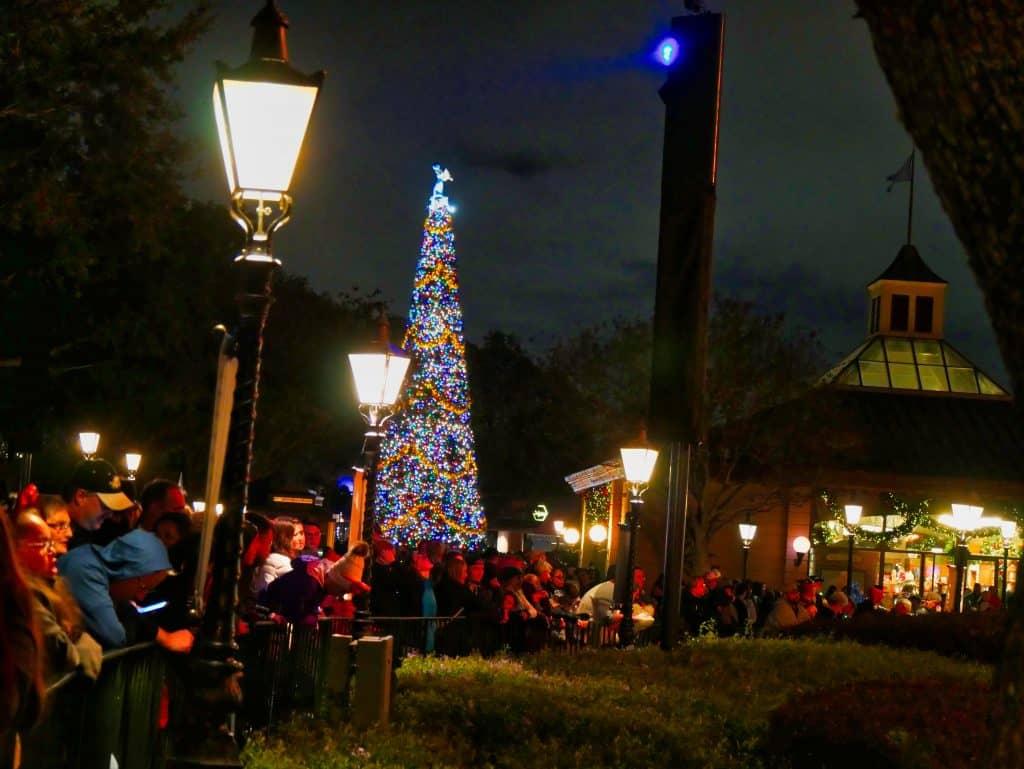 Christmas tree at night at Epcot, Disney World