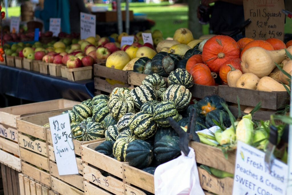Farmers Market things to do in Tuscaloosa Alabama vegetables on display