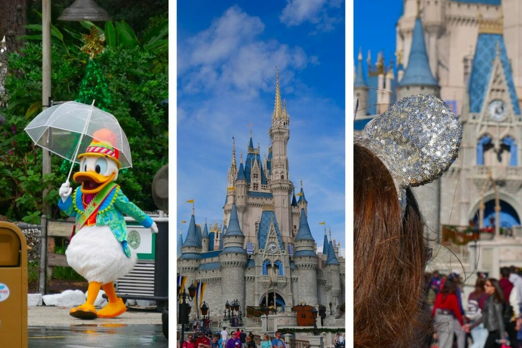Going to Disney World Alone The Ultimate Solo Trip to Disney Guide