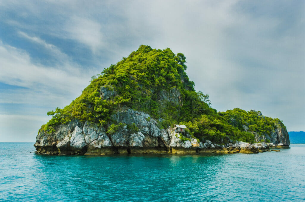 island with greenery on it