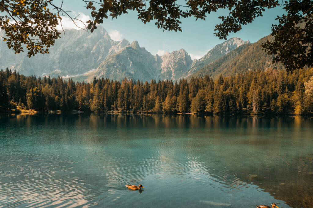 lake with trees and mountains