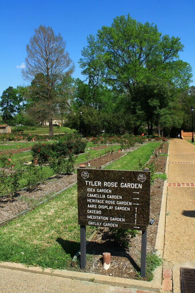 Rose Garden in Tyler Texas